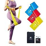FitBeast Fitnessbänder, Resistance Bands 3-Set, Gymnastikband mit 3 Widerstandsstufen für Training...