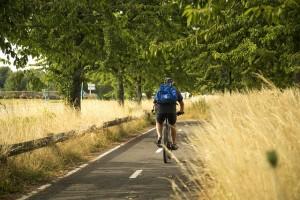 Auch Fahrrad fahren verbrennt Kalorien