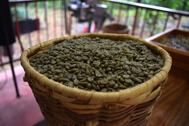 Grüner Kaffee zum abnehmen