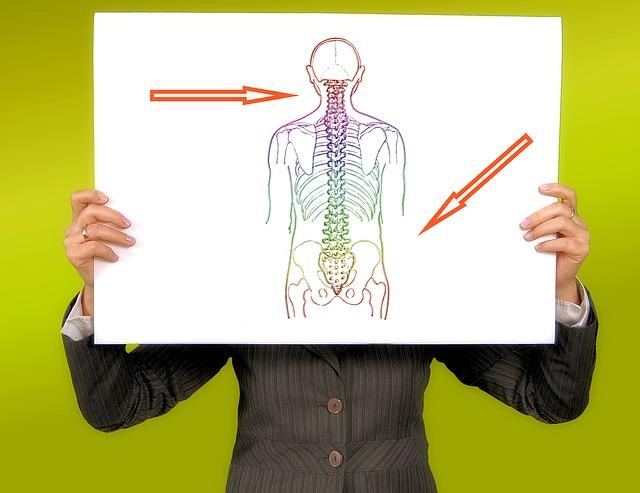 Verklebte Faszien sorgen für Rückenschmerzen