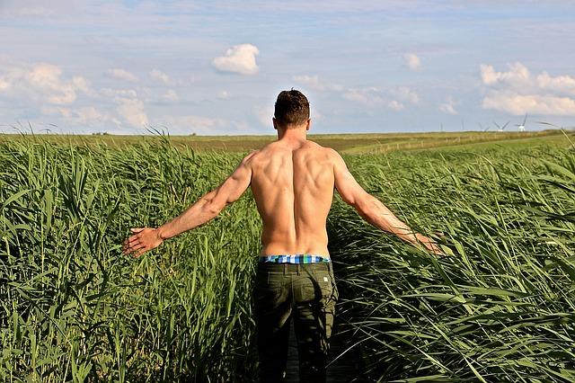 Whey Protein Powder hilft beim Muskelaufbau