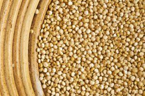 Quinoa kaufen