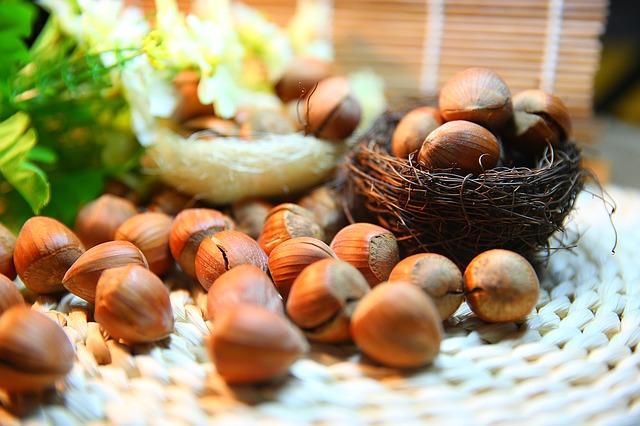 Nüsse enthalten viel Eiweiß