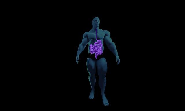 Proteine Verdauung - jeder Körper ist anders