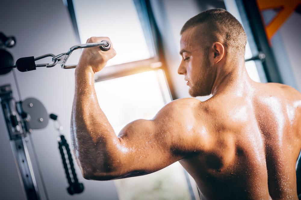 Muskelmasse aufbauen