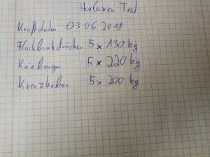 Horlaxen Test - meine Kraftdaten im Juni