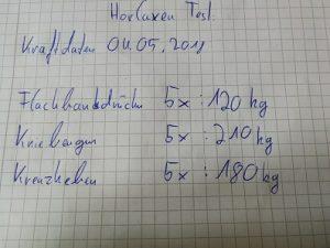 Horlaxen Testbericht - meine Kraftdaten im Mai