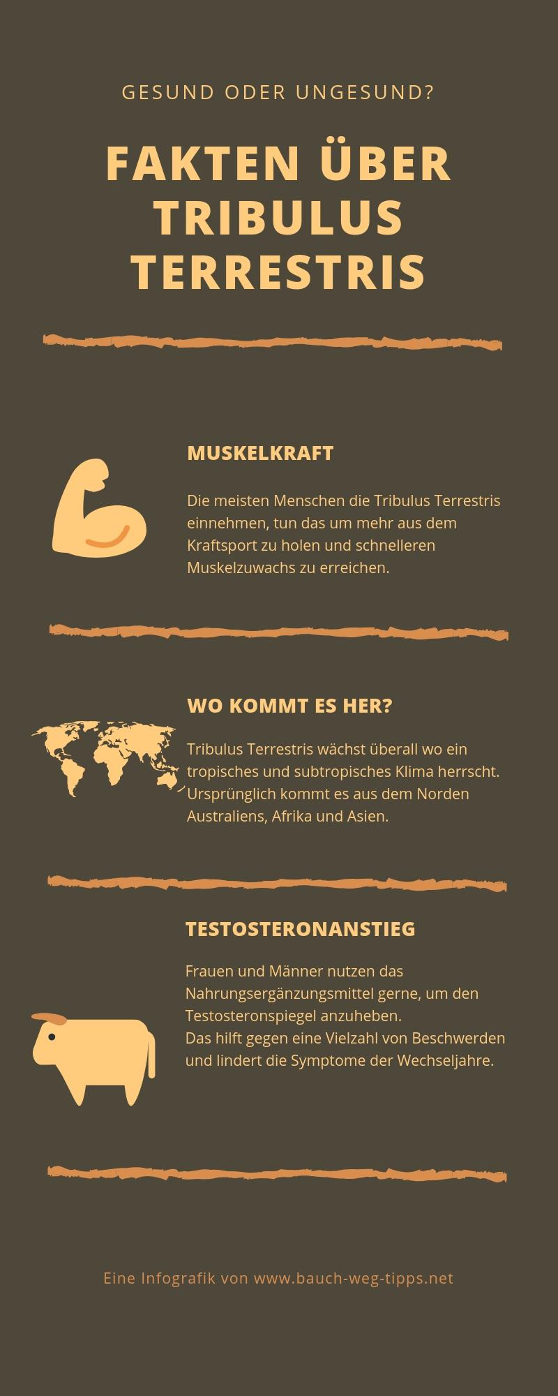 Tribulus Terrestris Infografik